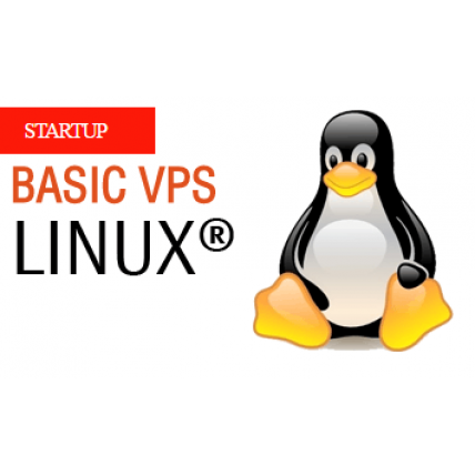 BASIC VPS-Linux Support